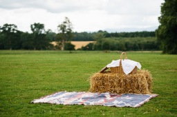 DIY Wedding – Collecting Vintage Picnic Baskets & Blankets